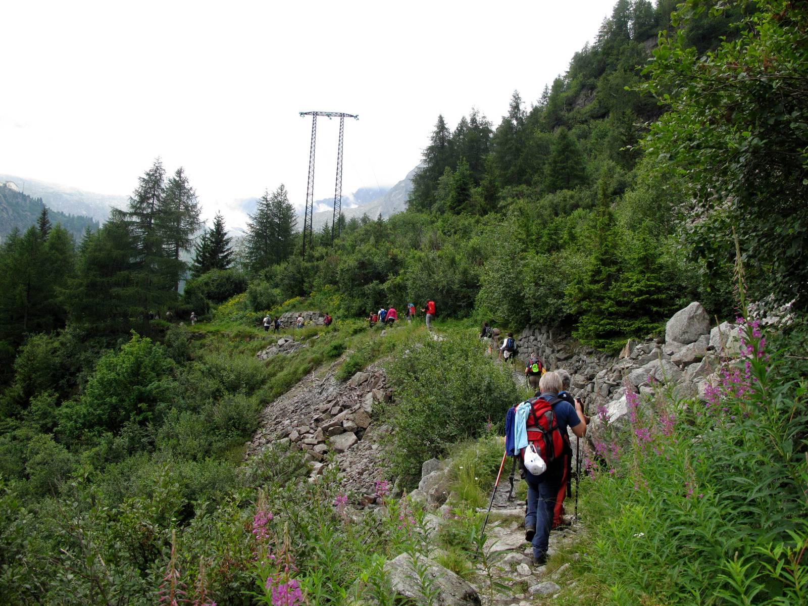 Passi-nella-neve-9-agosto-2014_Narrazione-in-cammino-destinazione-Garibaldi25 Copia