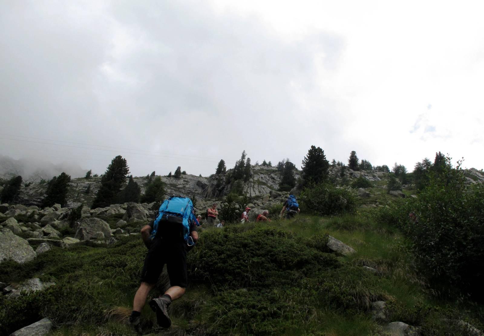 Passi-nella-neve-9-agosto-2014_Narrazione-in-cammino-destinazione-Garibaldi36 Copia