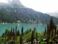 Passi-nella-neve-9-agosto-2014_Narrazione-in-cammino-destinazione-Garibaldi26 Copia