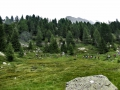 Passi-nella-neve-9-agosto-2014_Narrazione-in-cammino-destinazione-Garibaldi31 Copia